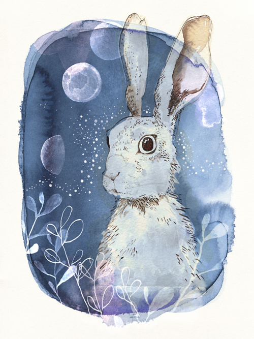 Cyanotype_hare