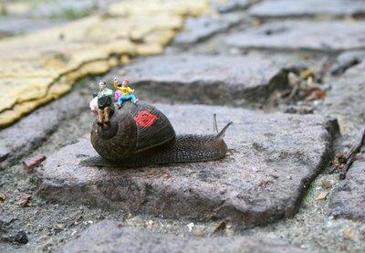 Snailbus1blog